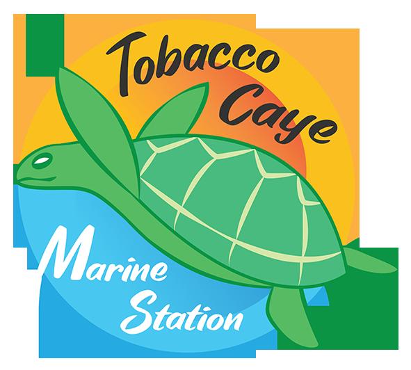Tobacco Caye Marine Station