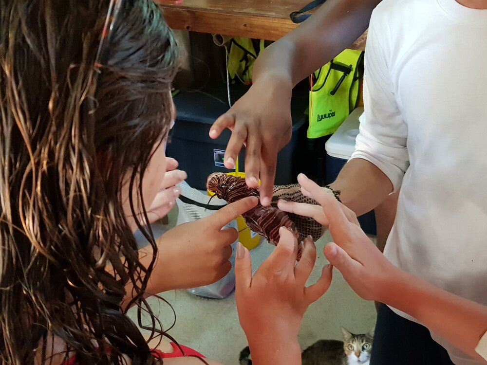 Tobacco Caye Marine Station Hands On Learning