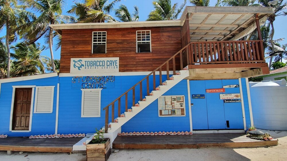 Tobacco Caye Marine Station Office