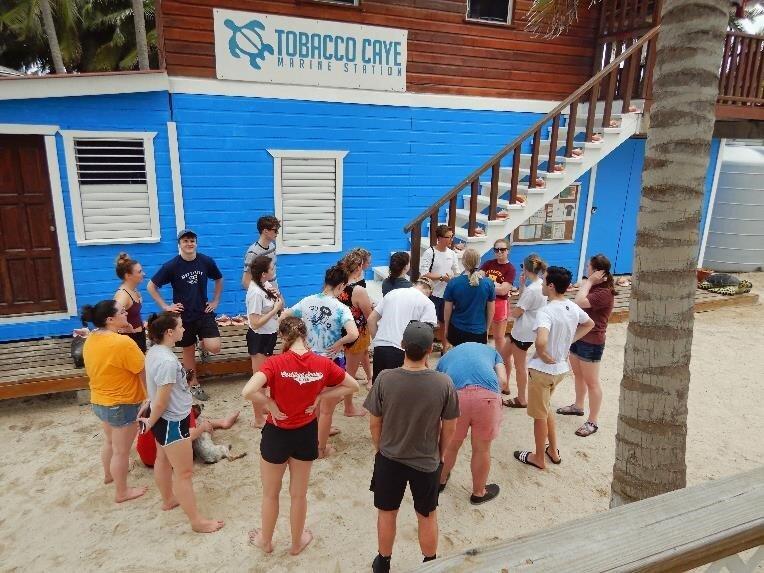 Tobacco Caye Marine Station Outdoor Classroom