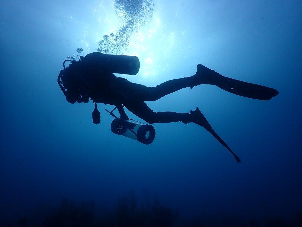 Tobacco Caye Marine Station SCUBA Diving